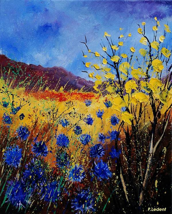 Poppies Flowers Floral Poster featuring the painting Blue Cornflowers by Pol Ledent