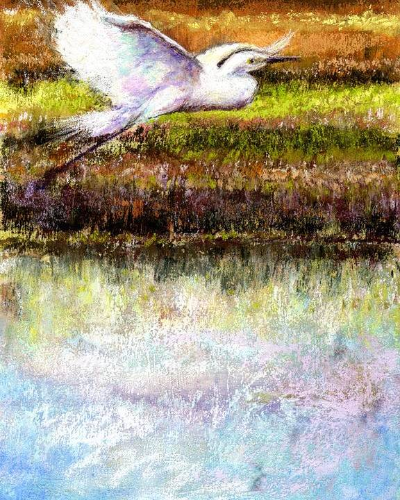 Pastel Poster featuring the pastel Egret 1 by Peter R Davidson