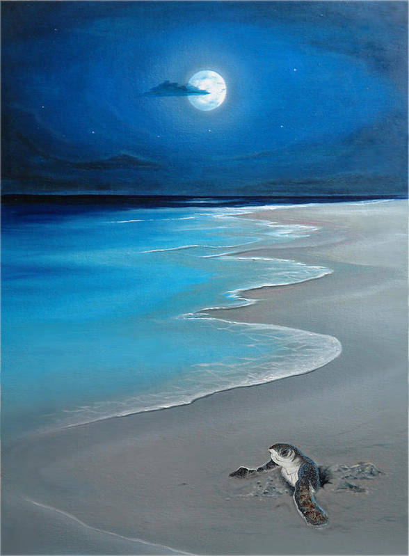 Seascape Art Poster featuring the painting First Born by Angel Ortiz