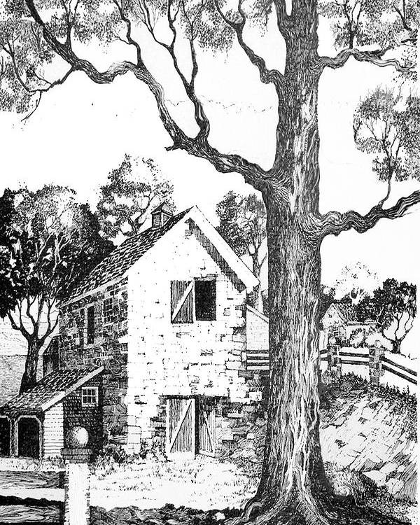 Texas Trees Barn Landscape Ink Giclee Prints Poster featuring the drawing Grandpas Barn by Donn Kay
