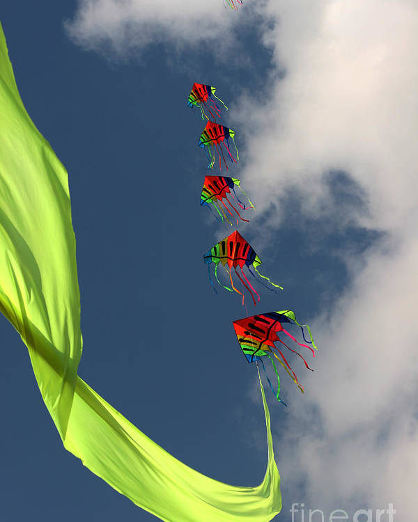 Kite Poster featuring the photograph High Hopes by Angel Ciesniarska