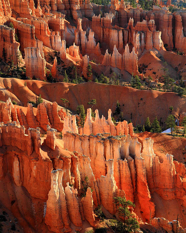 Bryce Poster featuring the photograph Hoodoos Of Sunset Point In Bryce Canyon by Pierre Leclerc Photography