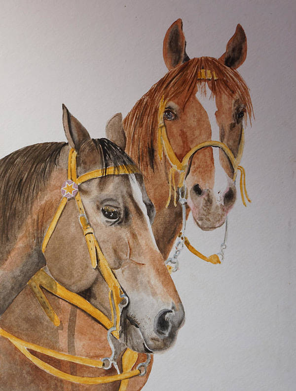 Horse Poster featuring the painting 2 Horses by Gary Thomas