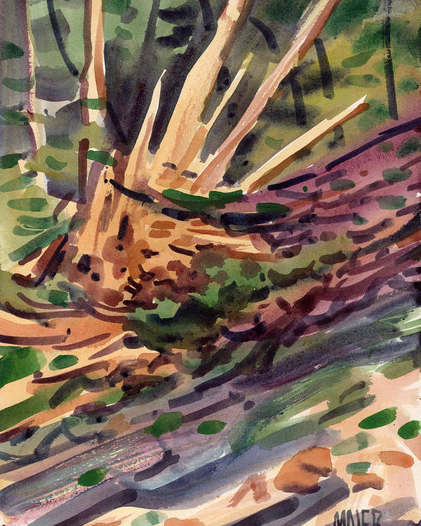 Plein Air Poster featuring the painting Shattered Pine by Donald Maier
