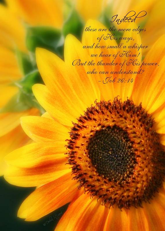 Sunflowers Poster featuring the photograph A Small Whisper by Debra Straub