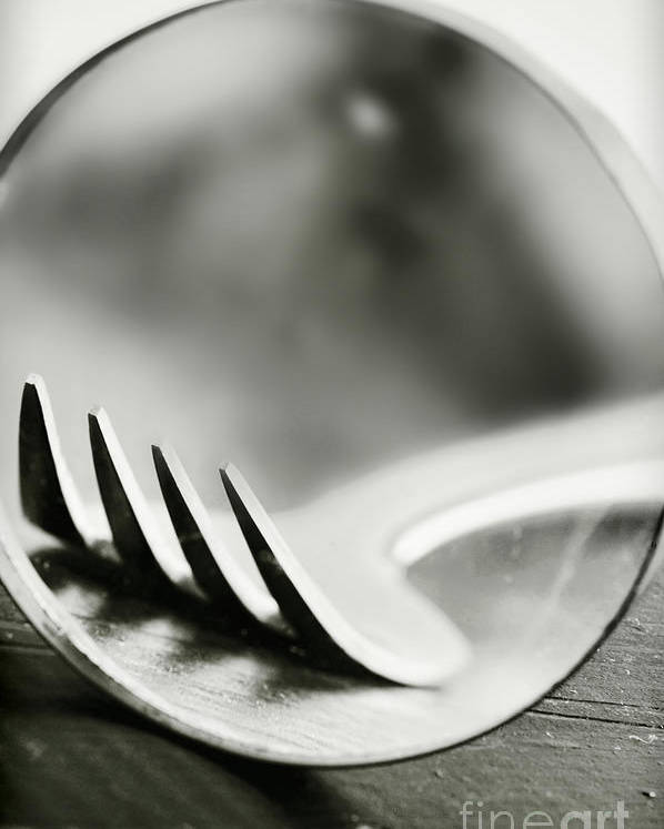 Fork Poster featuring the photograph Fork by HD Connelly