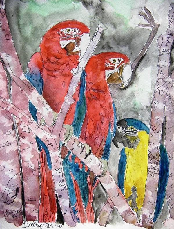 Bird Poster featuring the painting 3 Parrots by Derek Mccrea