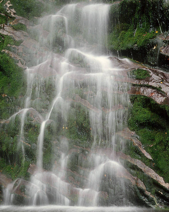 Water Poster featuring the photograph Waterfall by Colin Woods
