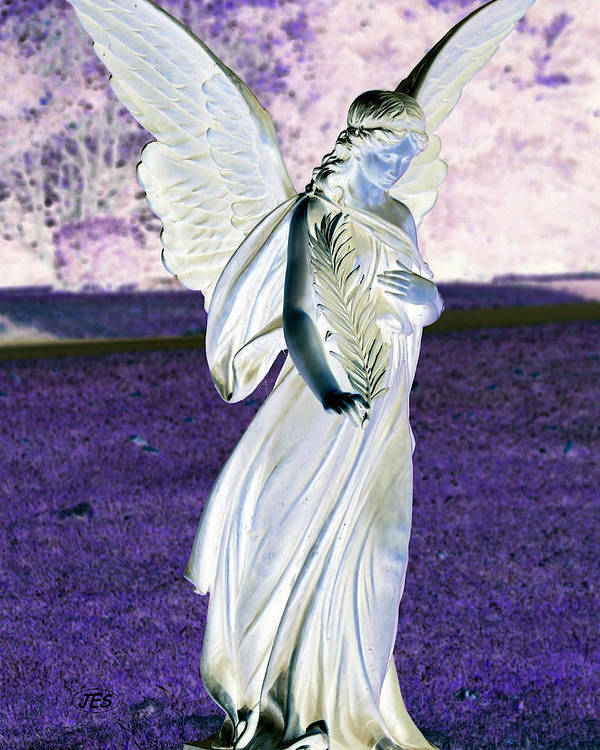 Angel Poster featuring the photograph 5043 2 by Jim Simms
