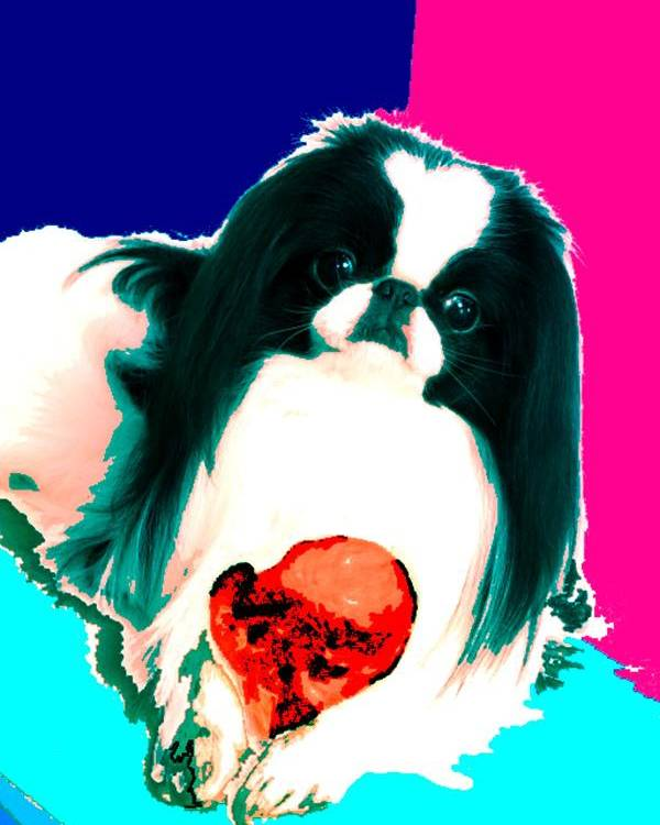 A Japanese Chin And His Toy Poster featuring the digital art A Japanese Chin And His Toy by Kathleen Sepulveda