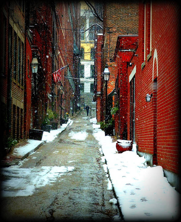 Boston Poster featuring the photograph A Peaceful Stroll by Lisa Jayne Konopka