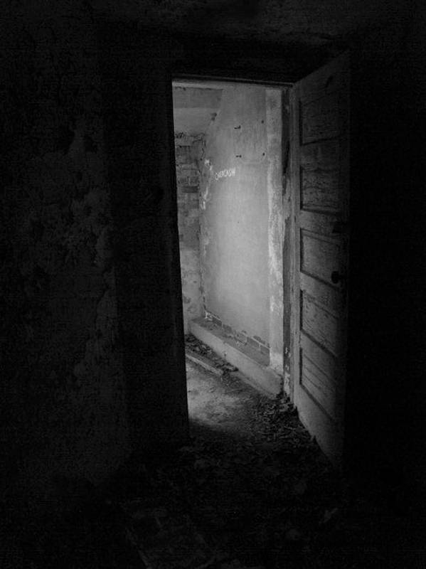 Door Poster featuring the photograph A Way Out by Jessica Brawley