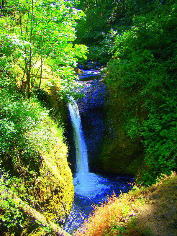 Falls Poster featuring the photograph Above Onionta Falls by Lisa Rose Musselwhite