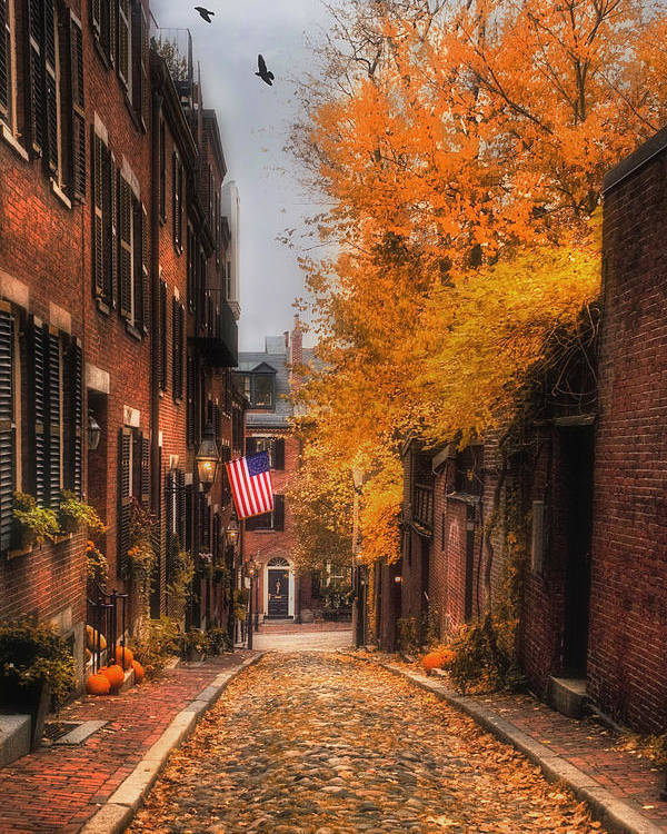 Boston Poster featuring the photograph Acorn St. by Joann Vitali
