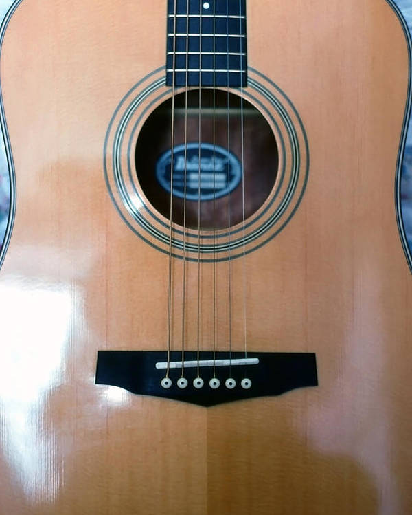 Guitar; Acoustic; Strings; Frets; Neck; Wood; Polished; Musical Instrument; String Instrument; Music Poster featuring the photograph Acoustic Guitar - Front by Steve Ohlsen