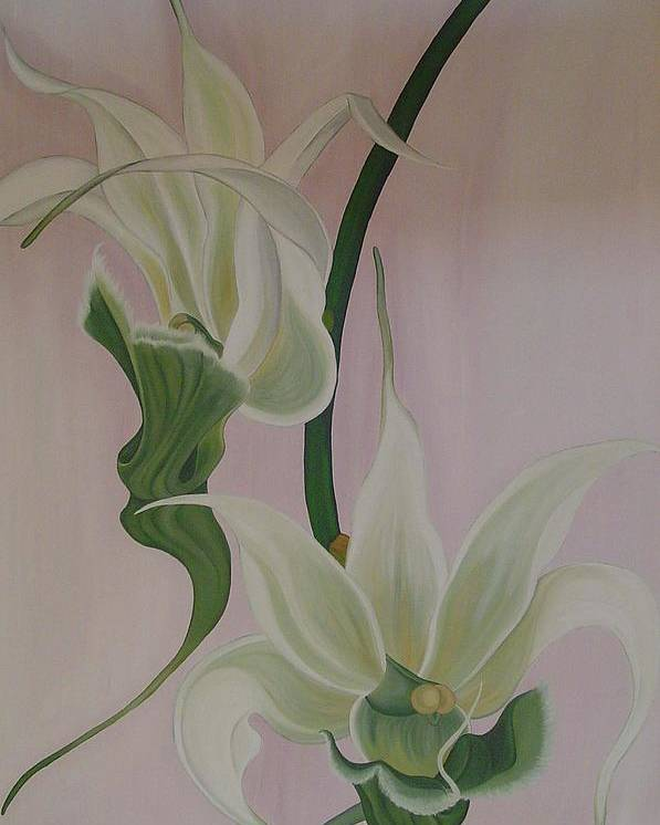 Marinella Owens Poster featuring the painting Aeranthes Peyrot Orchide by Marinella Owens