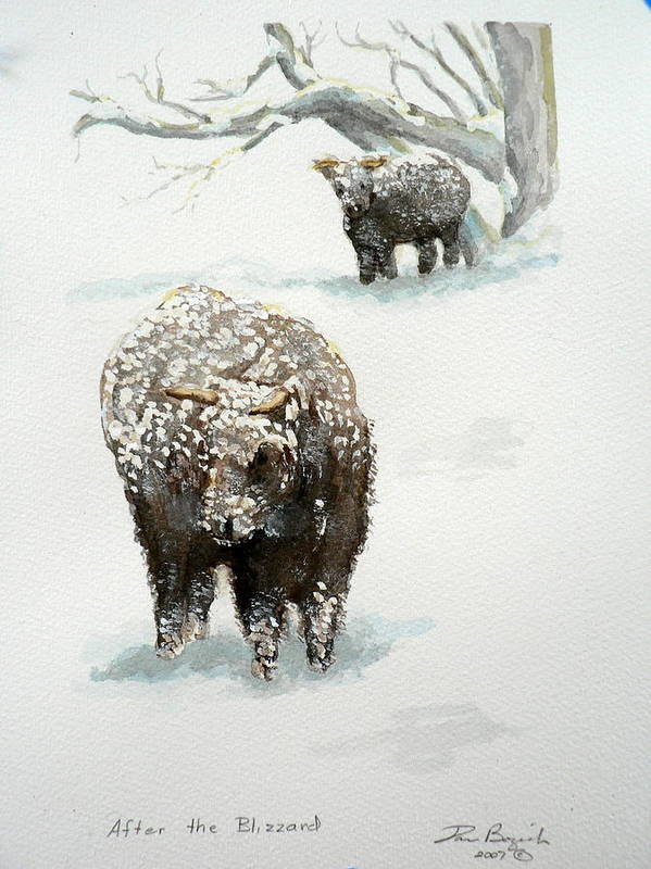 Cattle Poster featuring the painting After The Blizzard by Dan Bozich