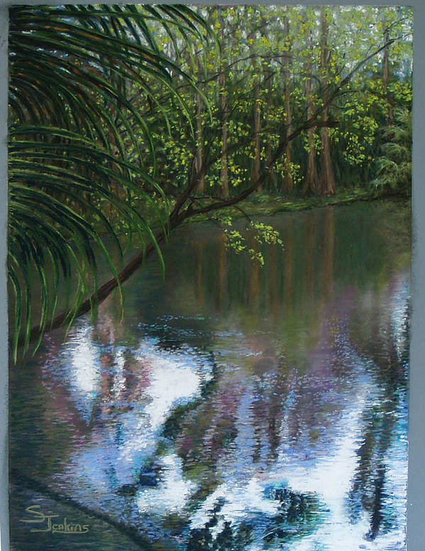 Landscape Poster featuring the painting Alafia River Reflection by Susan Jenkins