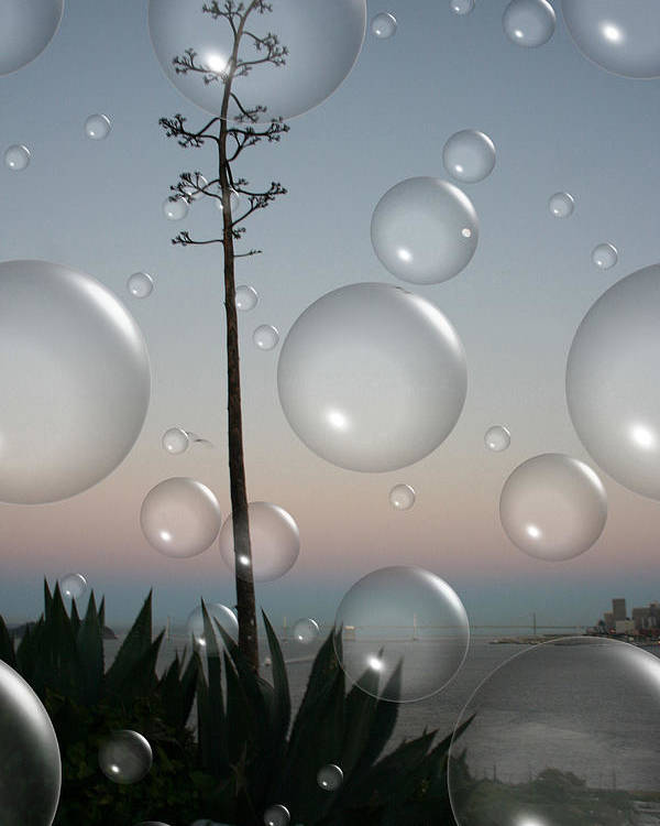 Alcatraz Poster featuring the digital art Alca Bubbles by Holly Ethan