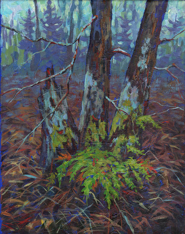 Alders Poster featuring the painting Alders With Ferns by Peggy Wilson