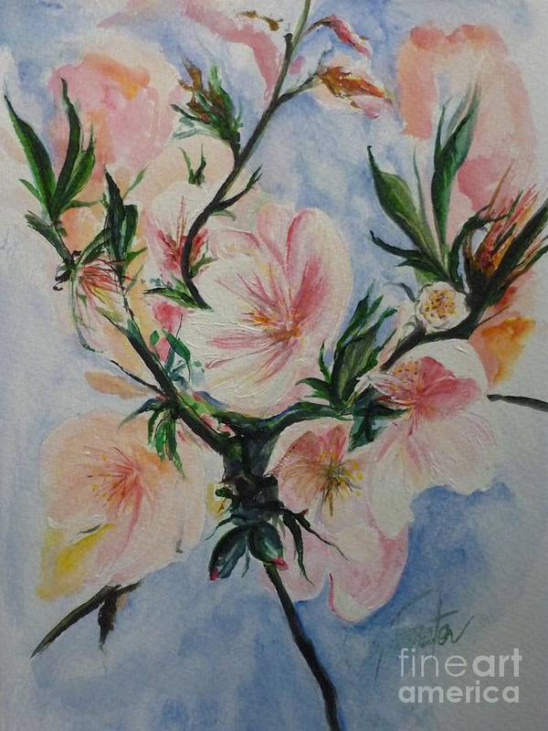 Flowers Poster featuring the painting Almond Blossom by Lizzy Forrester