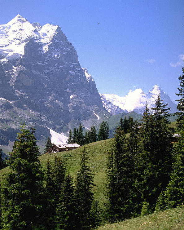 Alps Poster featuring the photograph Alps by Flavia Westerwelle