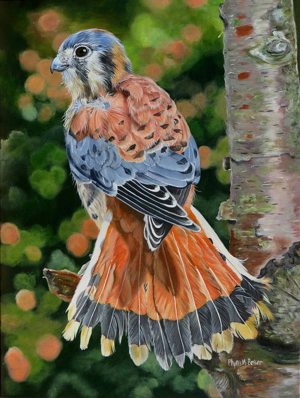 Bird Poster featuring the painting American Kestrel In My Garden by Phyllis Beiser