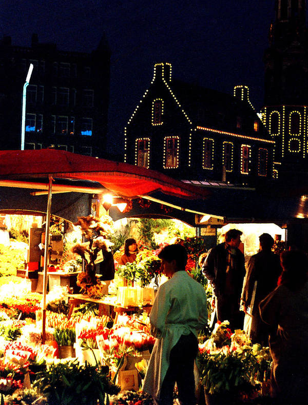 Flowers Poster featuring the photograph Amsterdam Flower Market by Nancy Mueller