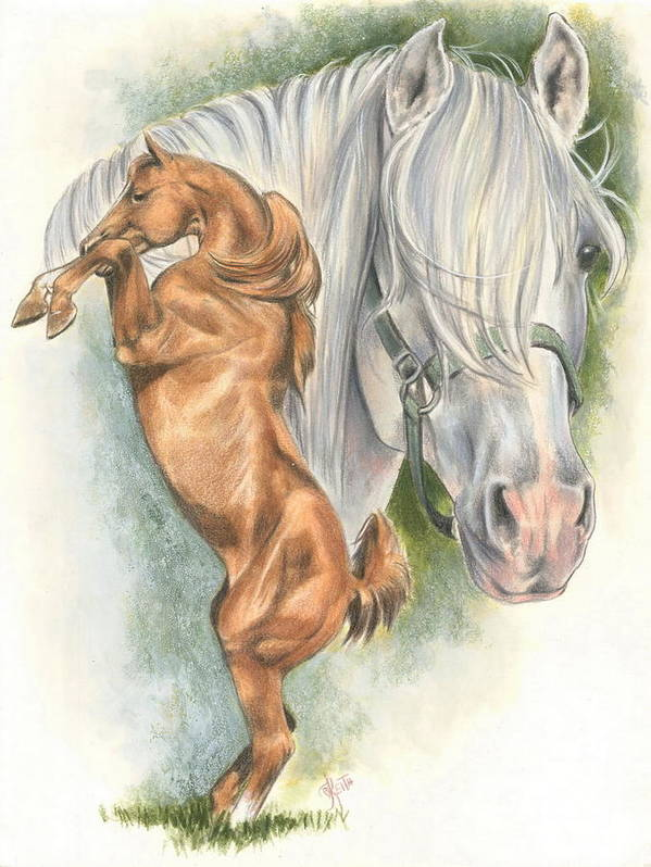 Horse Poster featuring the mixed media Andalusian by Barbara Keith