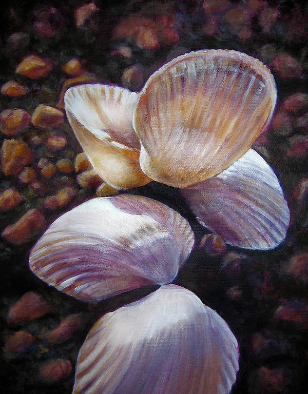 Painting Poster featuring the painting Ane's Shells by Fiona Jack