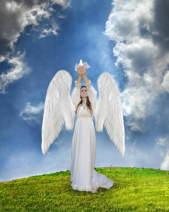 Angel Poster featuring the photograph Angel Releasing A Dove by Jill Battaglia
