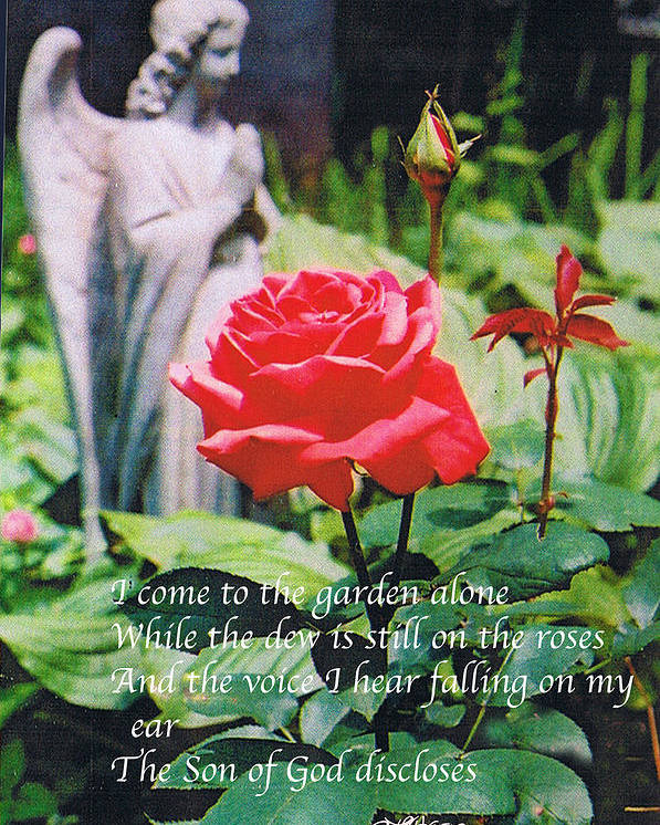 Angel Statute Poster featuring the photograph Angel with Roses 2 by Seth Weaver