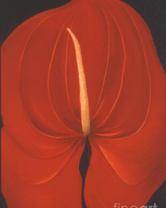 Anthurium Poster featuring the painting Anthurium by Mary Erbert