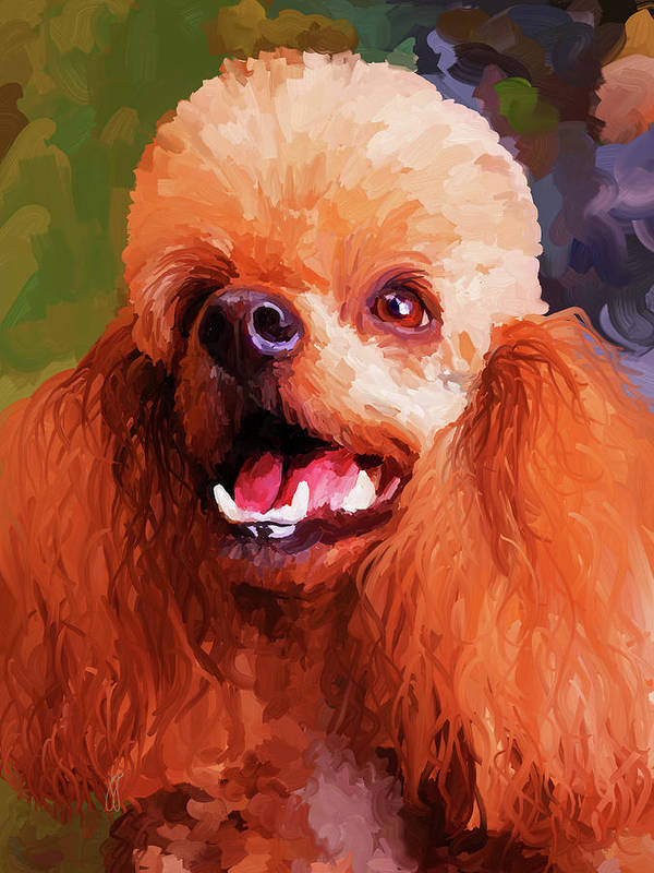 Apricot Poster featuring the painting Apricot Poodle by Jai Johnson