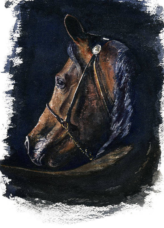 Horse Poster featuring the painting Arabian by John D Benson