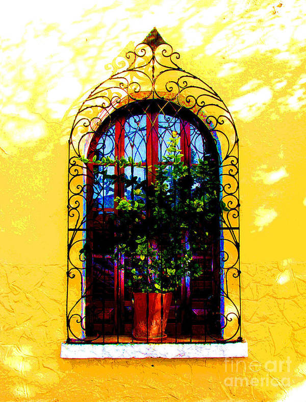 Darian Day Poster featuring the photograph Arched Window By Darian Day by Mexicolors Art Photography
