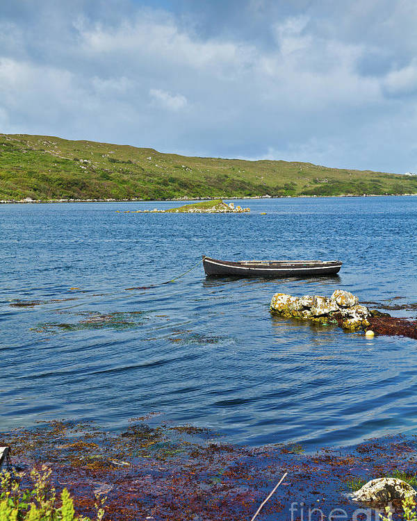 Ardmore Bay Poster featuring the photograph Ardmore Bay by Gabriela Insuratelu