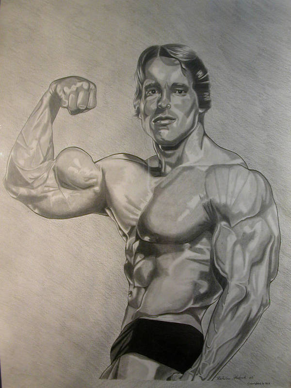 Pencil Poster featuring the drawing Arnold by Nick H