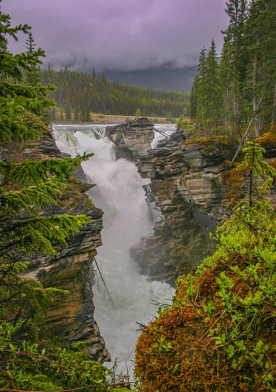 Alberta Poster featuring the photograph Athabasca Falls by Edie Ann Mendenhall