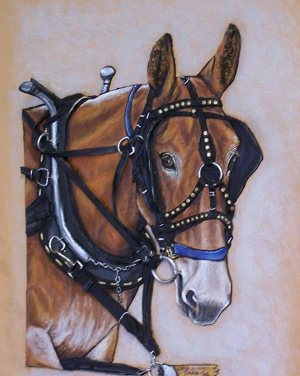Horses Poster featuring the painting Augustus by Lilly King