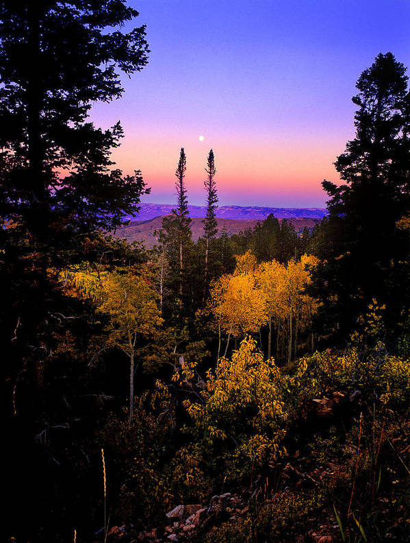 Autumn Poster featuring the photograph Autumn Evening by Grant Sorenson