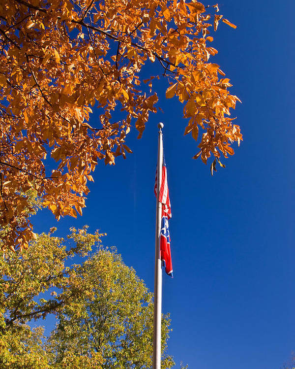 Flag Poster featuring the photograph Autumn Flag by Douglas Barnett
