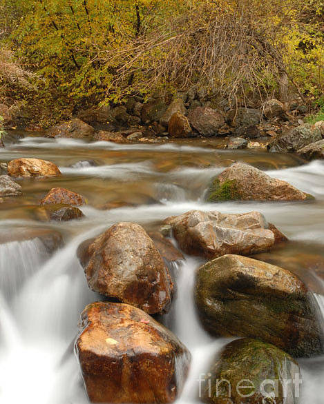 Utah Poster featuring the photograph Autumn In Provo Canyon by Dennis Hammer