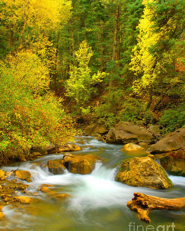 Utah Poster featuring the photograph Autumn On Big Cottonwood River by Dennis Hammer