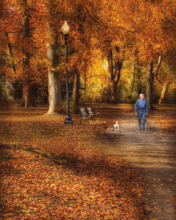 Savad Poster featuring the photograph Autumn - People - A Walk In The Park by Mike Savad