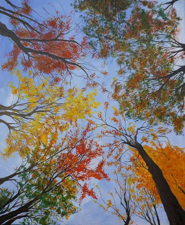 Tree Poster featuring the painting Autumn Sky by Lizzy Forrester