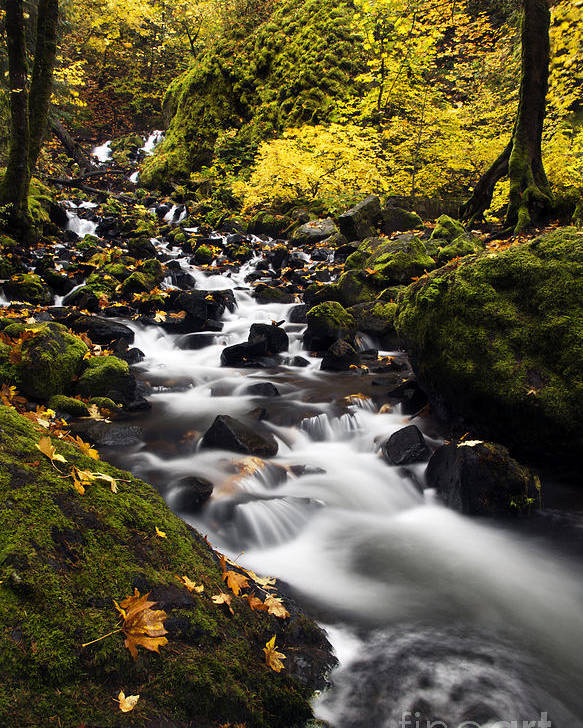 Starvation Creek Poster featuring the photograph Autumn Swirl by Mike Dawson