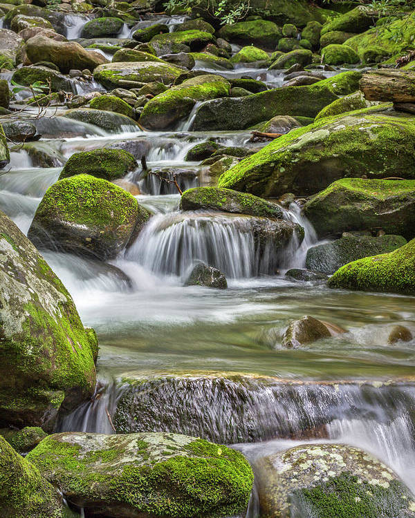 Vertical Poster featuring the photograph Back Country Stream by Jon Glaser