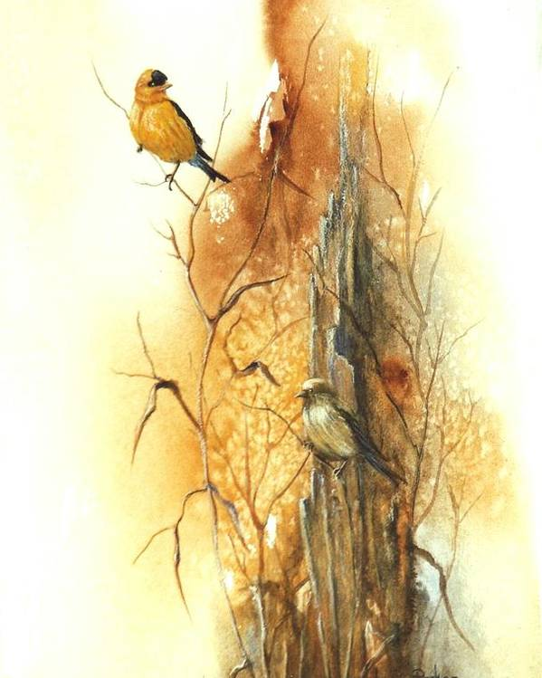 American Goldfinch Poster featuring the painting Backyard American Goldfinch by Lynne Parker