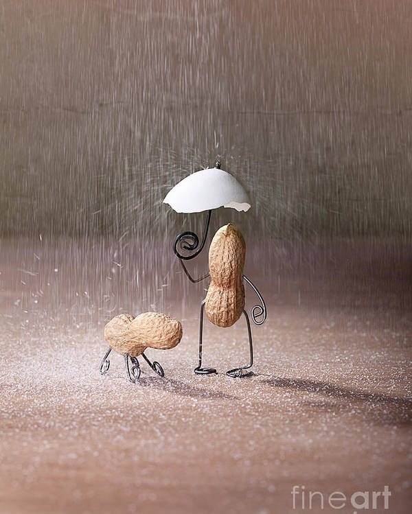 Peanut Poster featuring the photograph Bad Weather 02 by Nailia Schwarz